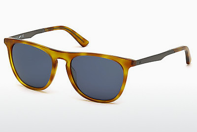 Aurinkolasit Web Eyewear WE0160 53V - Havanna, Yellow, Blond, Brown